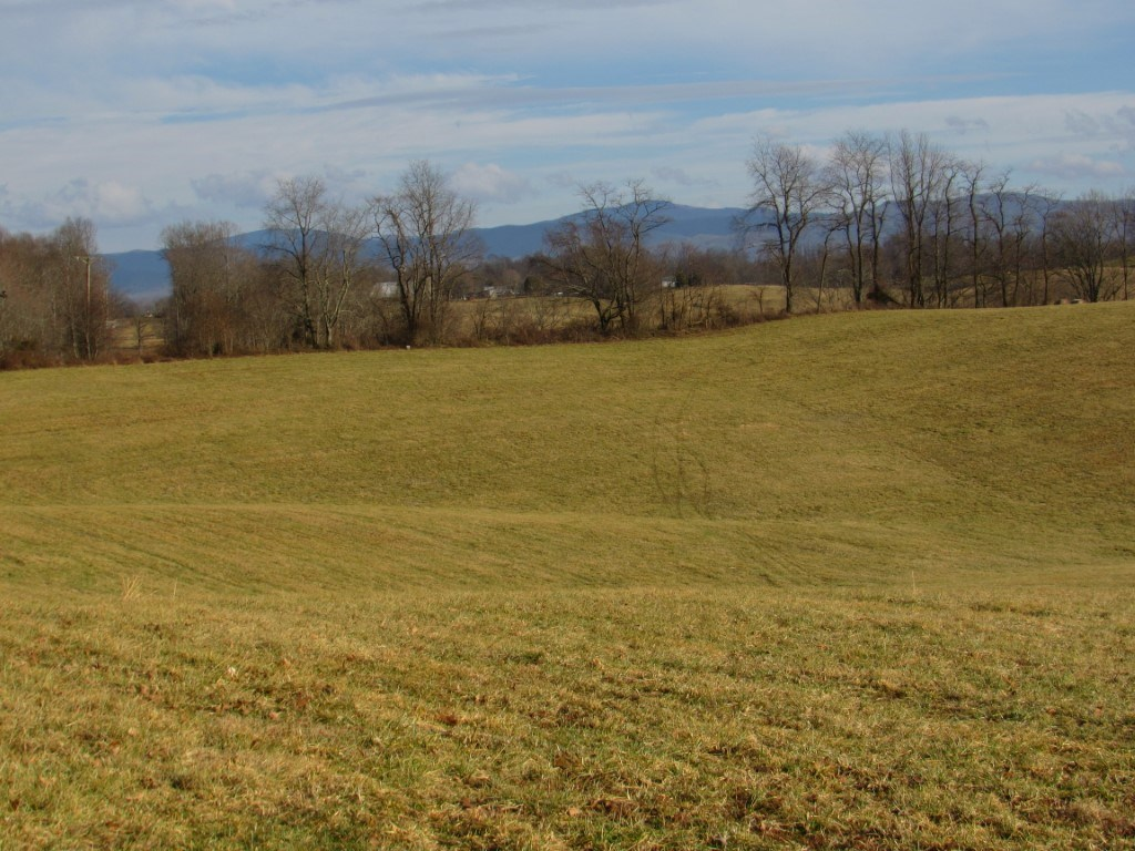 Dairy And Cattle Farm For Sale In Meadowview VA