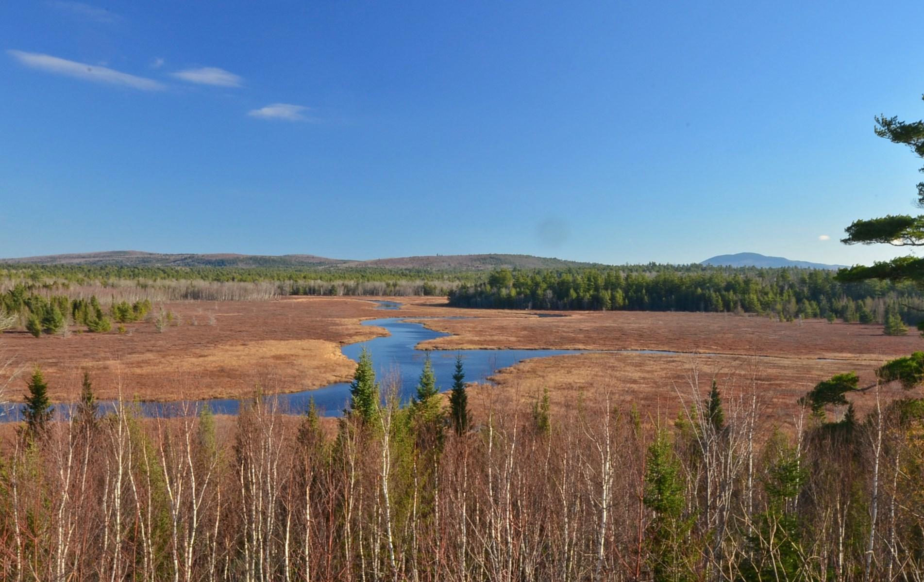 Aurora Maine 3,670 +/- acres Land For Sale