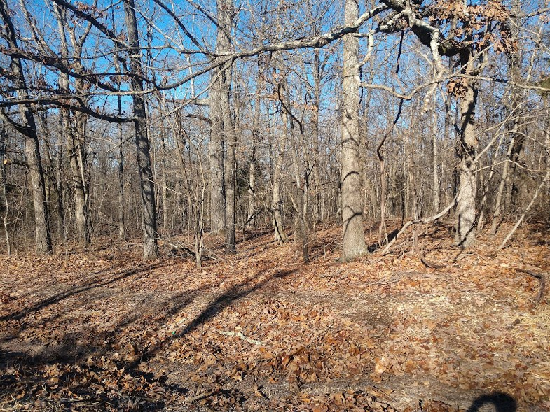 Missouri Ozarks acreage in Howell County