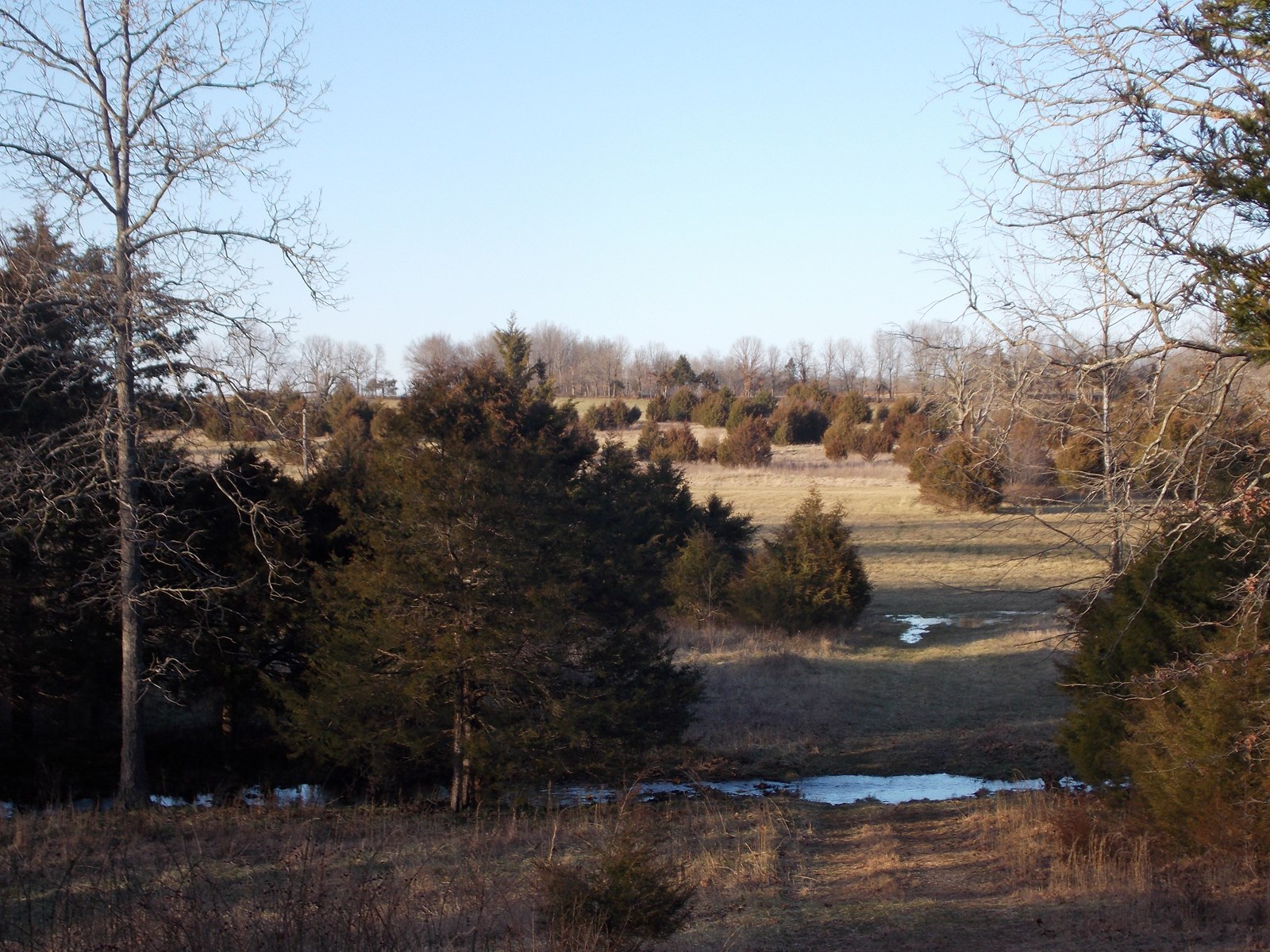 Hunting Property for Sale in Missouri