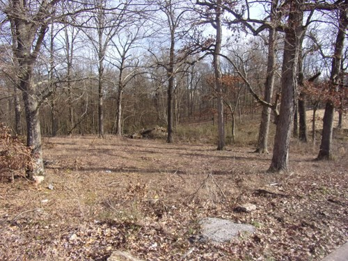 Vacant Land City lot in town for sale in Pocahontas, AR