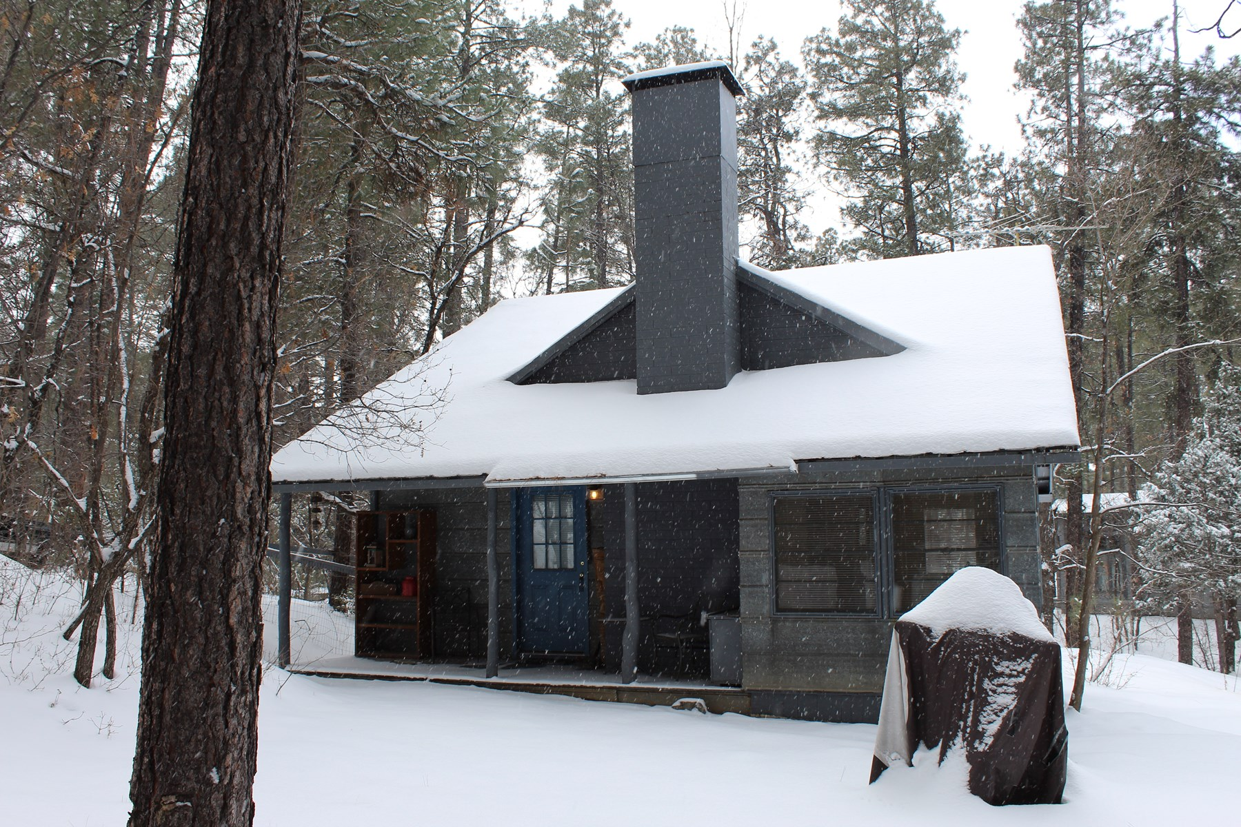 Cabin in the Pines of Prescott Arizona