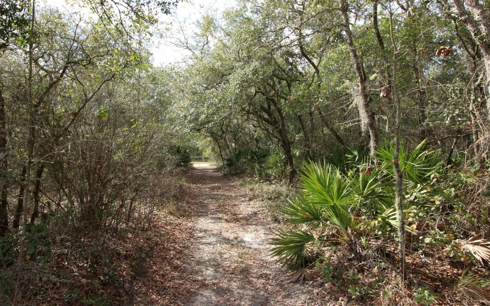 Secluded corner lot right in a private, gated community!