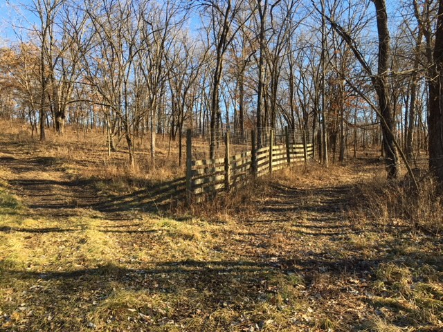 Great Hunting and Country Home Site in Grundy County MO