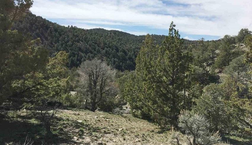 Battle Mountain land for sale