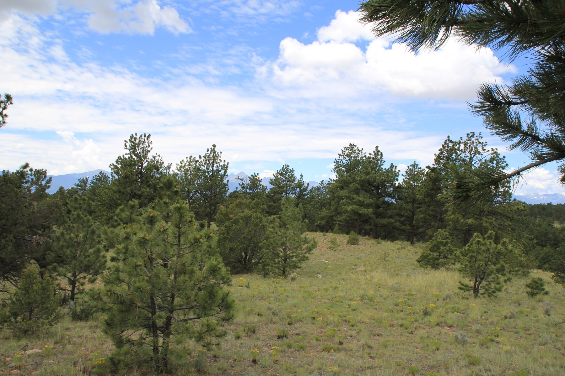 Colorado Mountain Land with VIEWS, Trees, NO COVENANTS