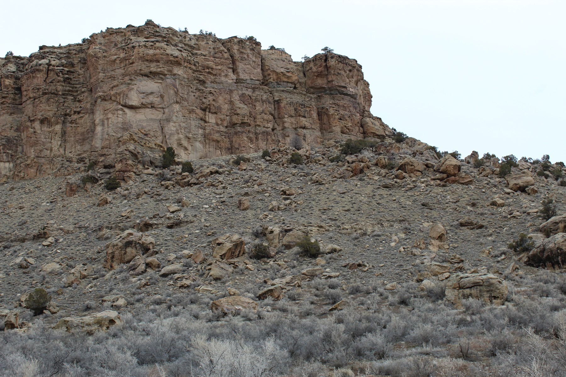 71.89 Acres of Colorado mountain land adjoining BLM.