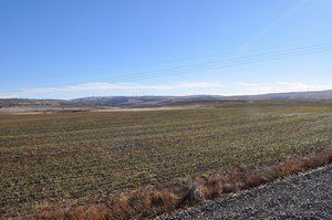 LAND FOR SALE IN GOLDENDALE WA,