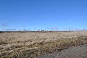 GOLDENDALE WA LAND FOR SALE, MINUTES FROM THE COLUMBIA RIVER