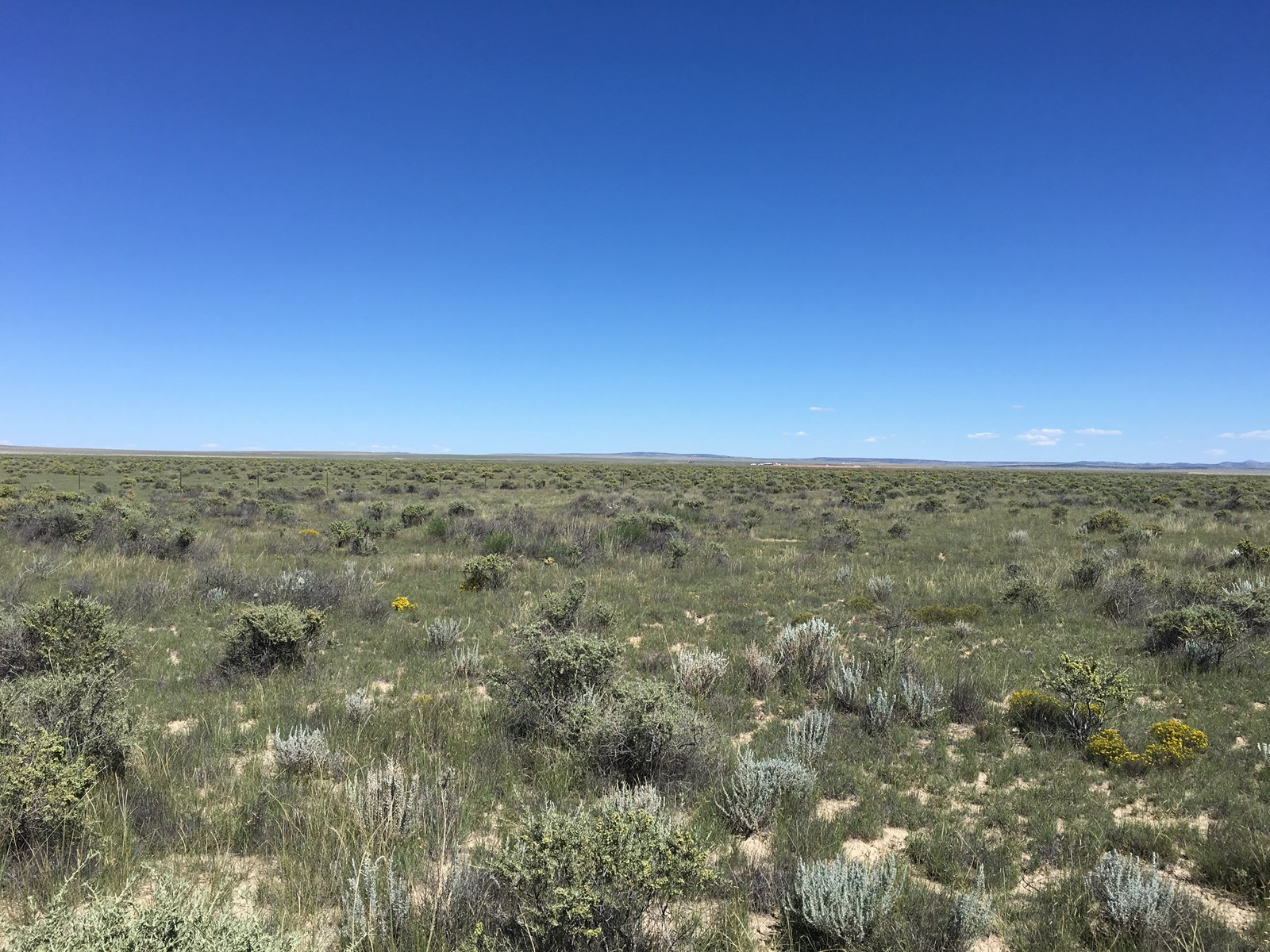 Central NM Acreage for Sale Torrance County Estancia Valley
