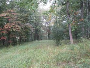 11.9 Acres in WV to build your dream Home on