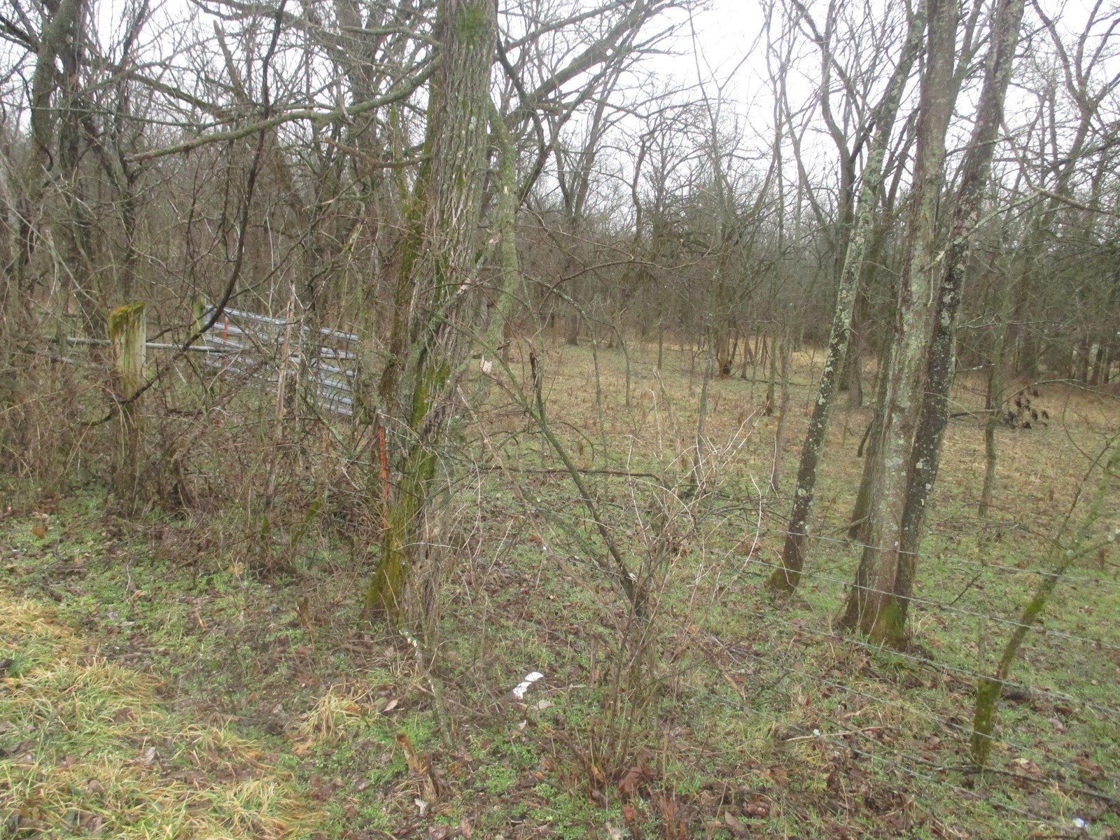Lot For Sale Lake Subdivision