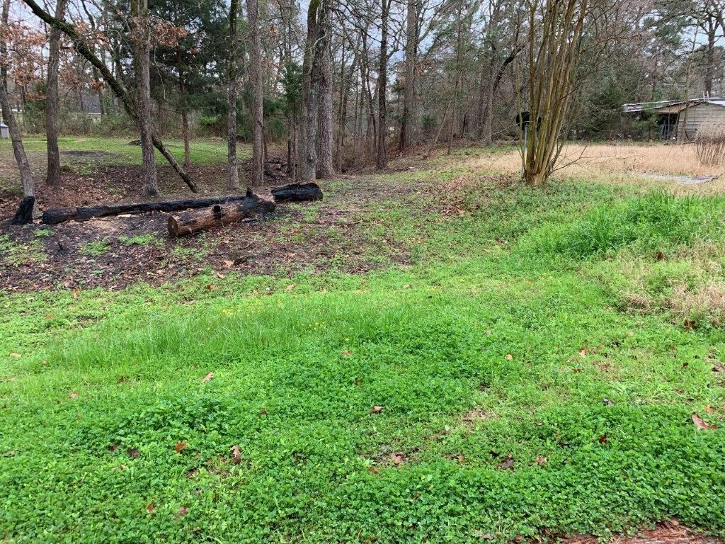 VACANT LOTS FOR SALE LAKE PALESTINE NEIGHBORHOOD EAST TX