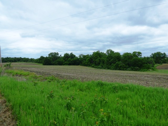 Appanoose County Land for Sale
