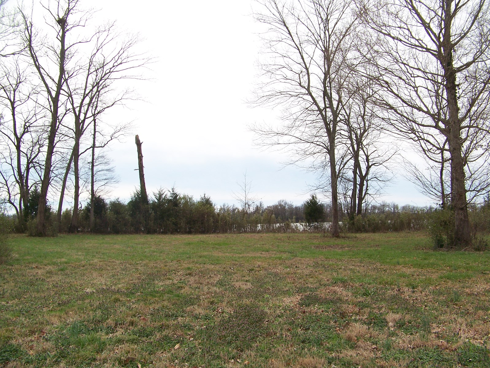 TENNESSEE RIVER WATERFRONT LOT FOR SALE NEAR CRUMP, TN