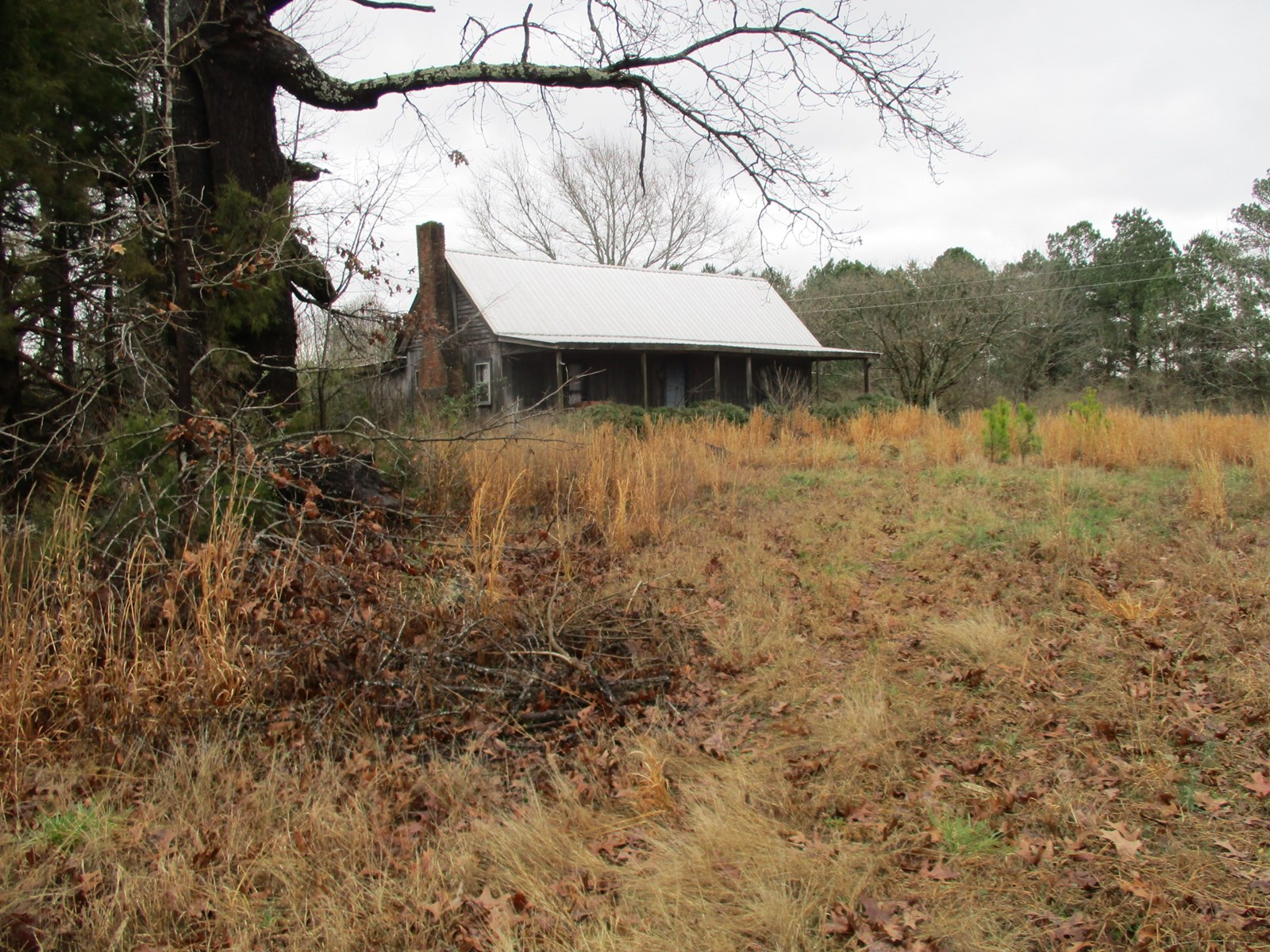 54 Acres For Sale in McNairy County; West Tennessee