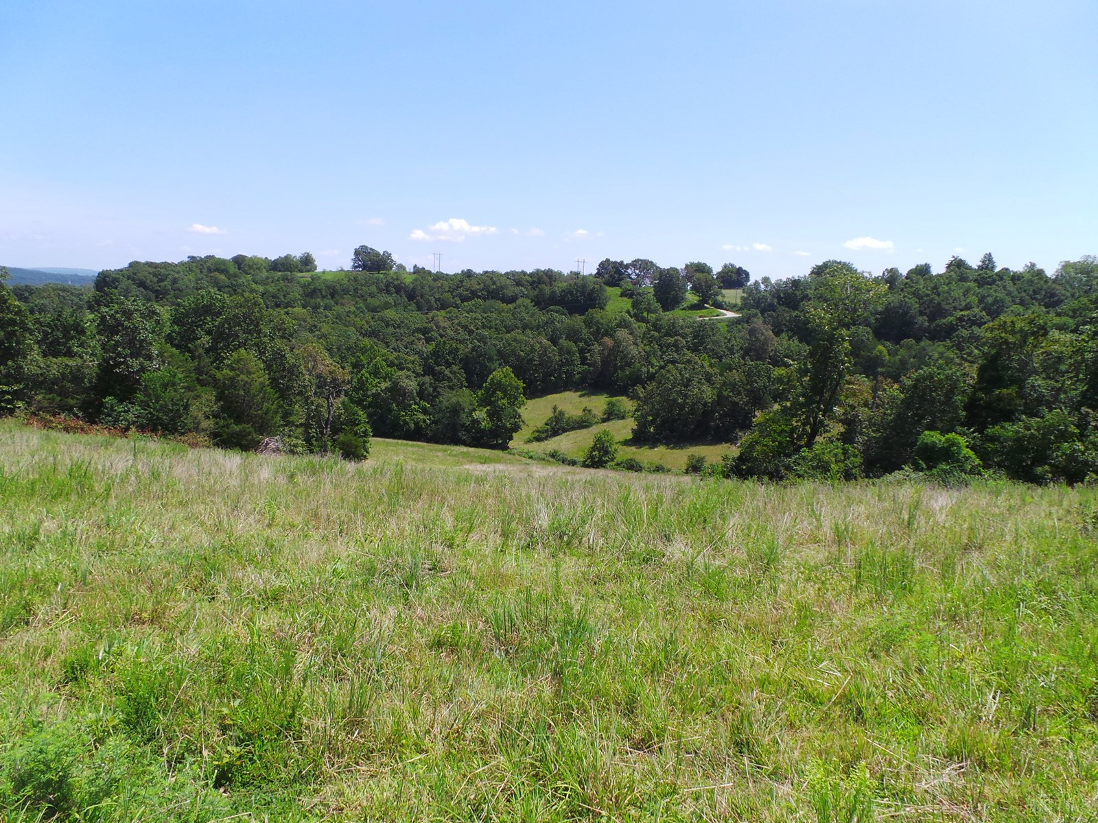 Farm for sale in Marion County Arkansas