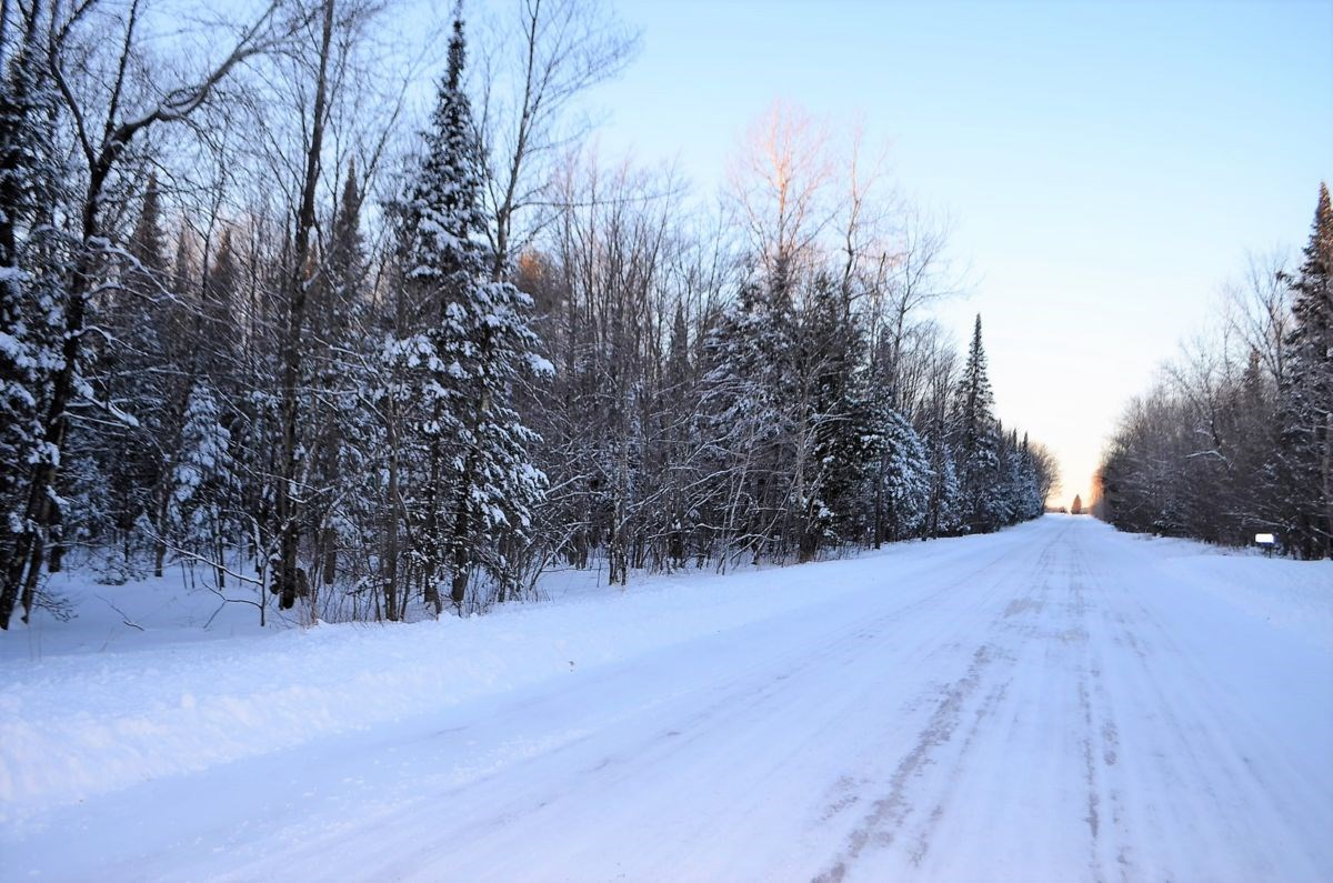 40 +/- Acres Hunting/Timberland in Marathon County WI