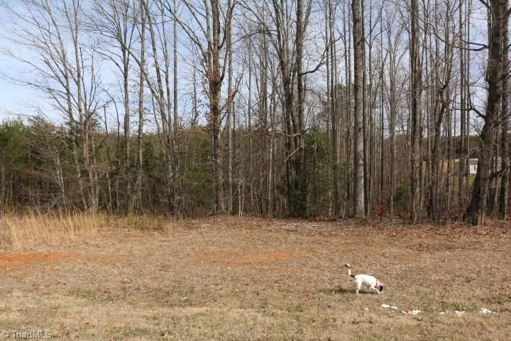 Land for sale in Mount Airy NC