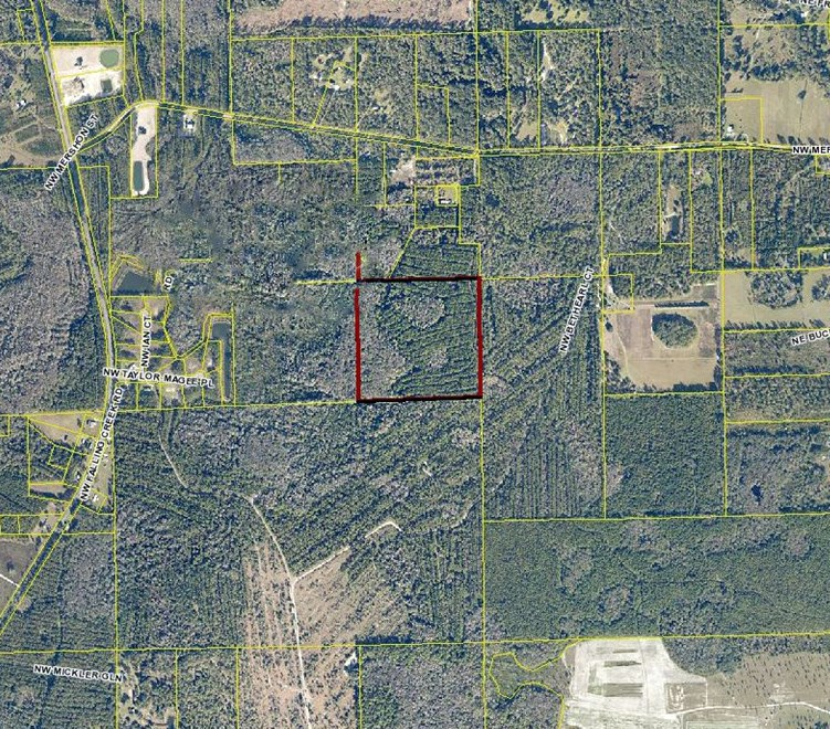 40 RURAL ACRES FOR SALE!