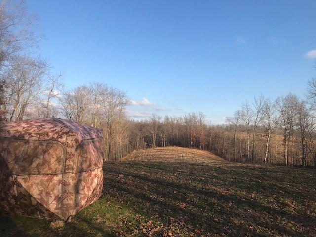 Southeast Missouri Land For Sale Home site or Hunting land
