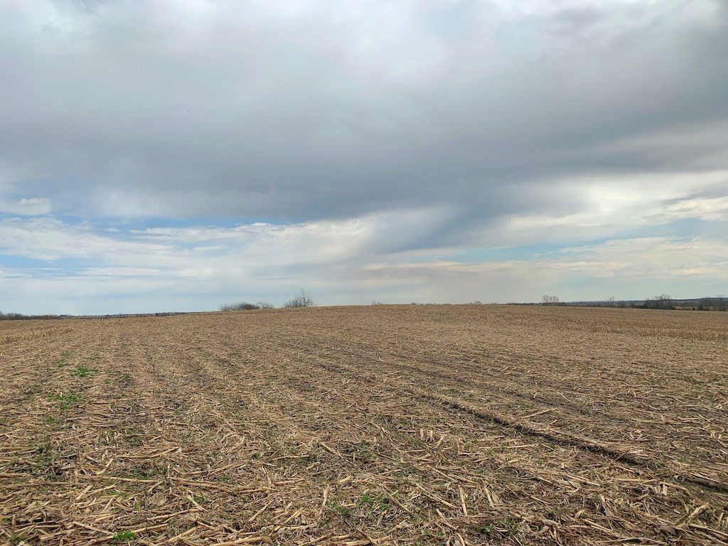 Crop Ground For Sale Southern Iowa