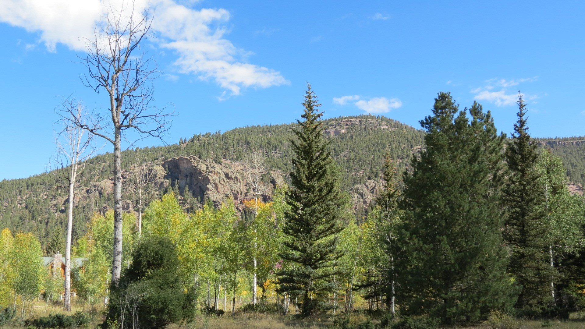Fly Fish Colorado on this 1ac Building Lot in the Mountains!