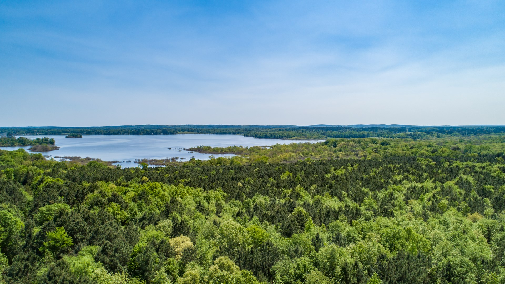 East Tx Timber Hunting Land For Sale Lake Front Panola Co