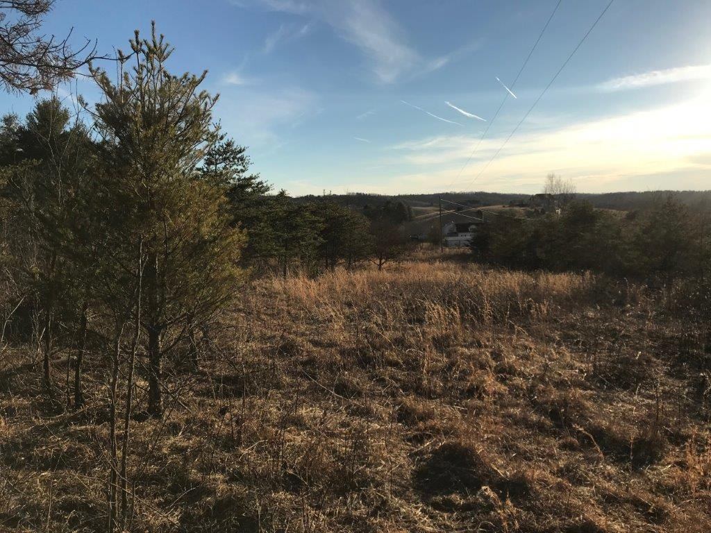 Floyd VA Land for Sale - Recreational, Building or Farming