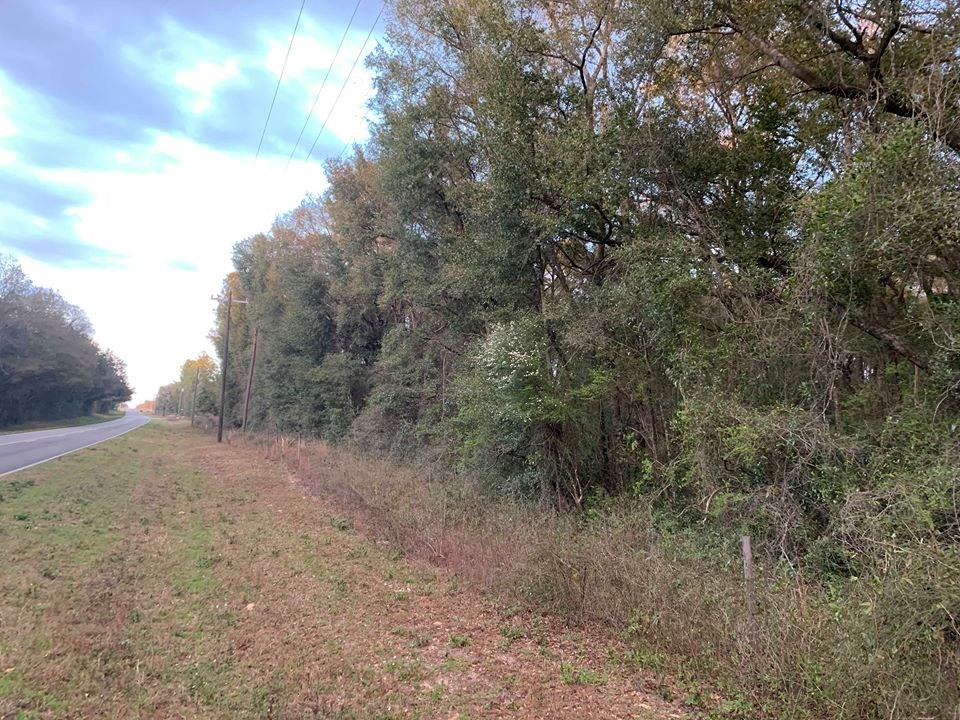 5 Acres Hickory Bluff Subdivision - Trenton, FL Gilchrist Co