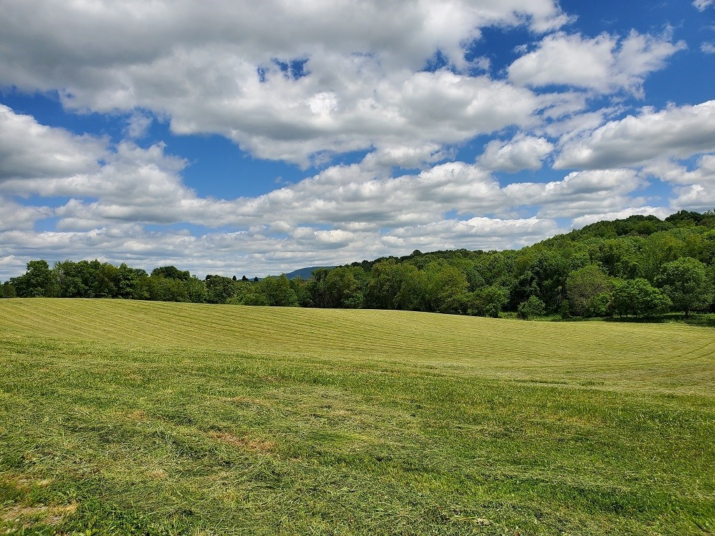 Country Acreage With Lake Views For Sale In Abingdon, VA