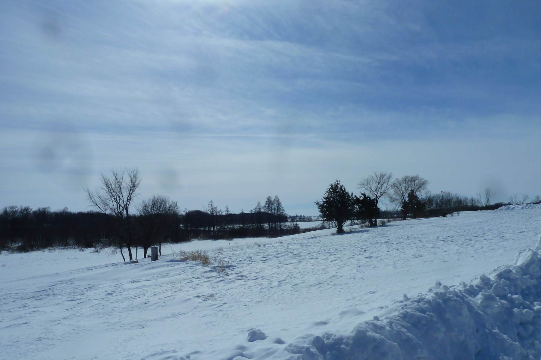 Annandale MN 120 Acres of Recreational Land Online Auction Ends 4/5/19