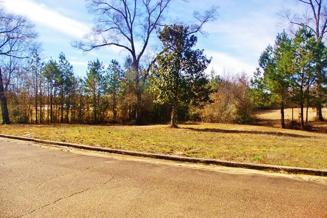Commercial Lot for Sale Near I-55 & Hwy 98, McComb, MS SW MS
