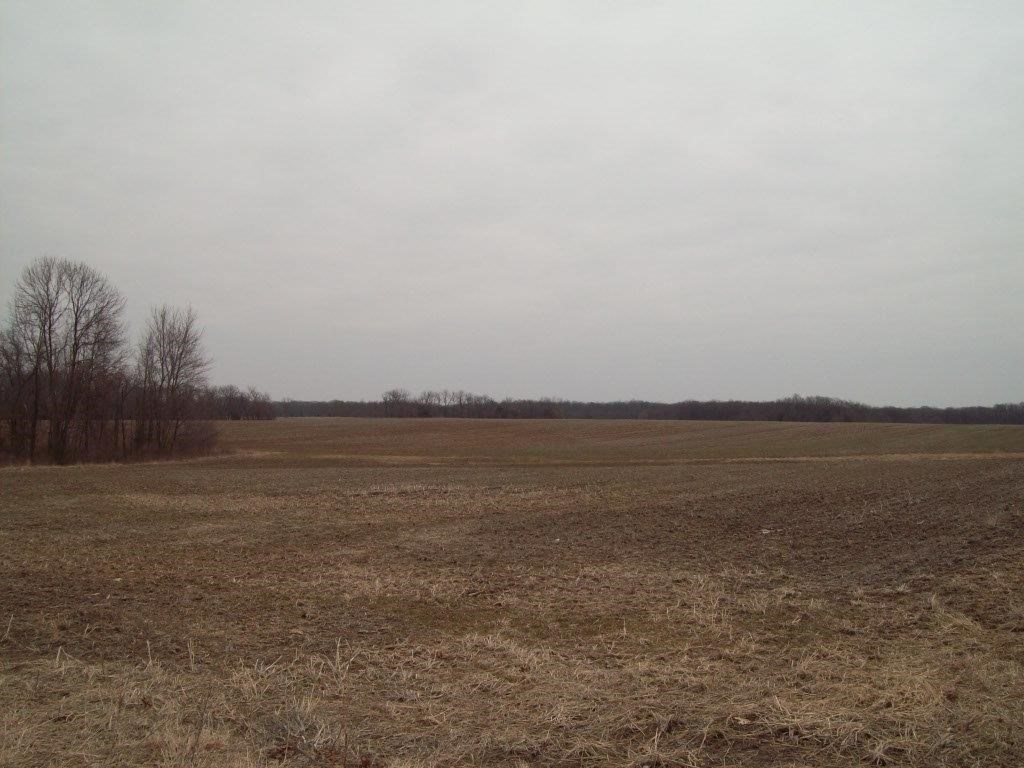 Online Only Farm Land Auction Warren County MO