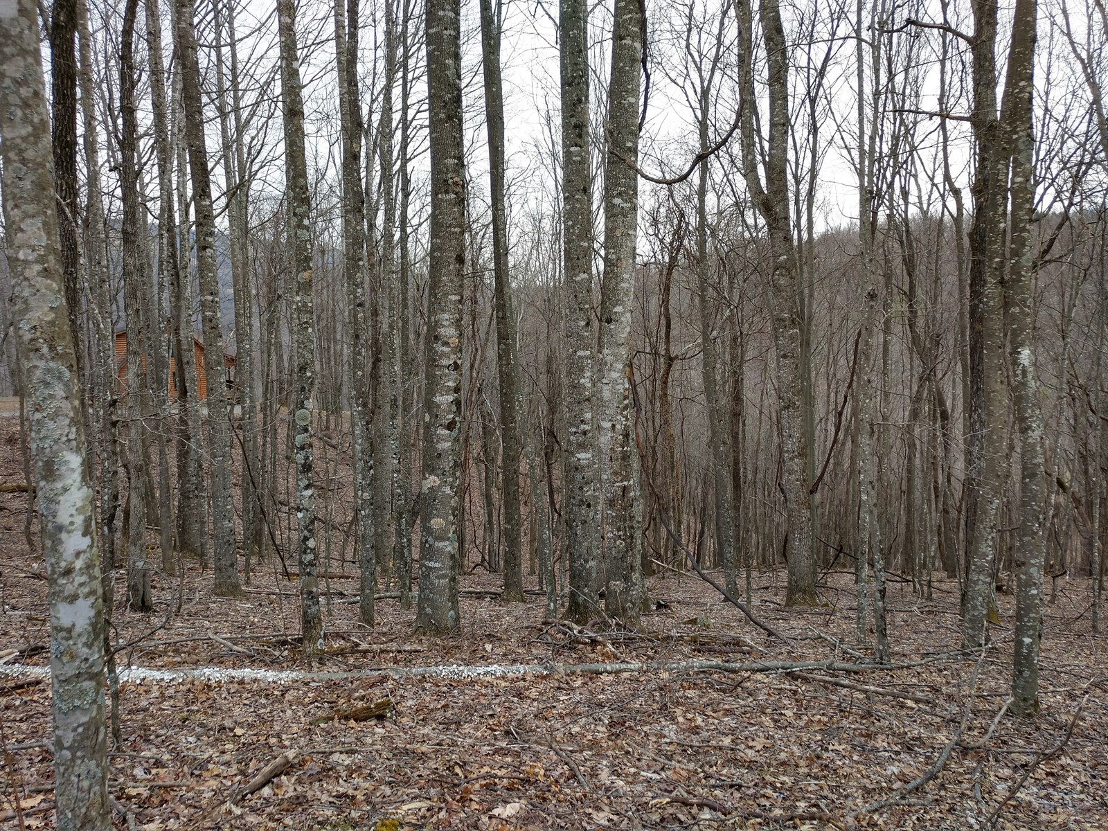 Building Lot in the Blue Ridge Mountains - Build your dream