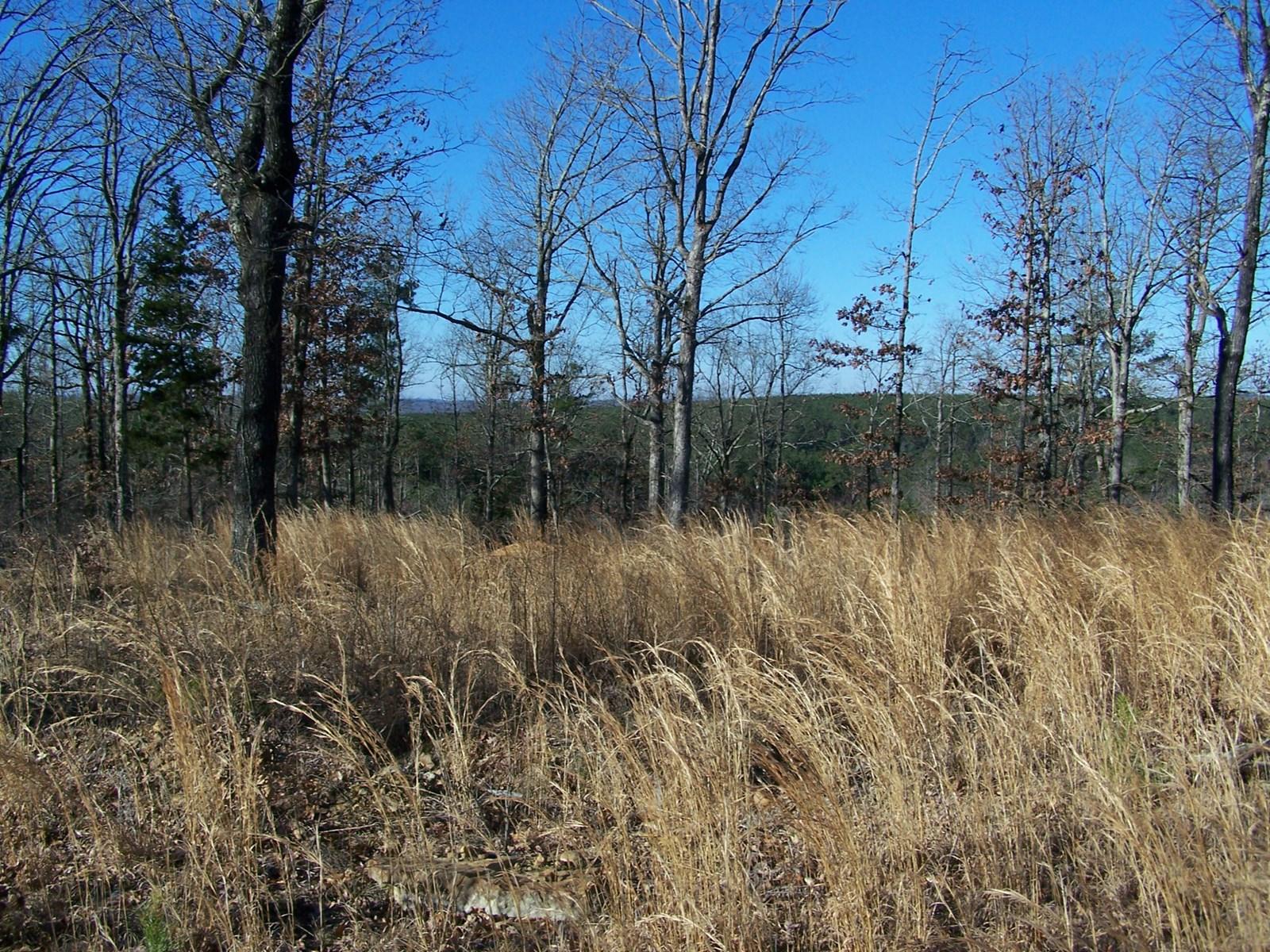 10 Acres of Land For Sale in Arkansas Ozarks