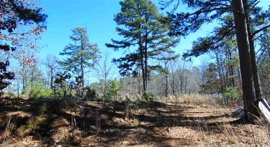 Vacant land with septic and water for sale in Marion Co AR
