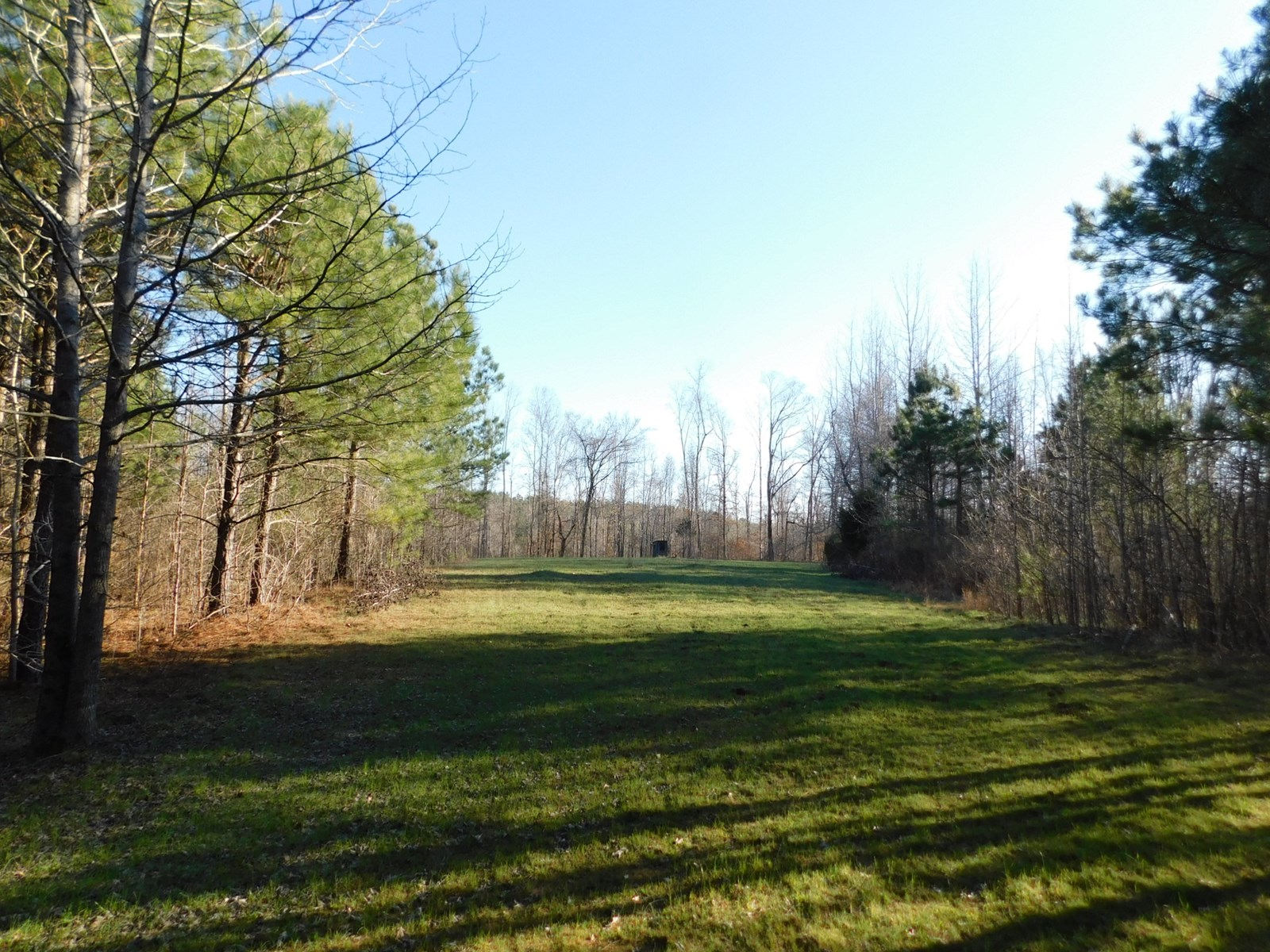 TENNESSEE LAND FOR SALE , ROW CROP FARM LAND, STREAM