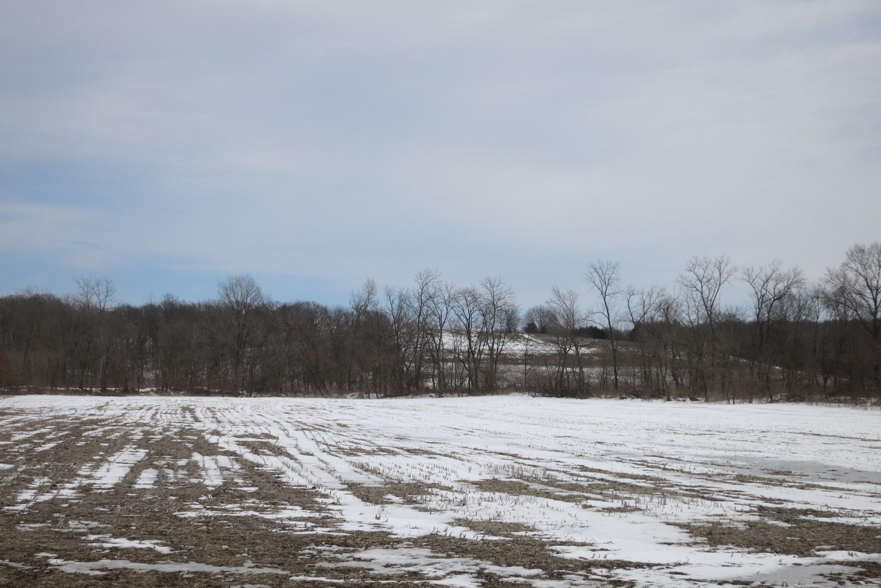 Acreage in Northwest Missouri For Sale