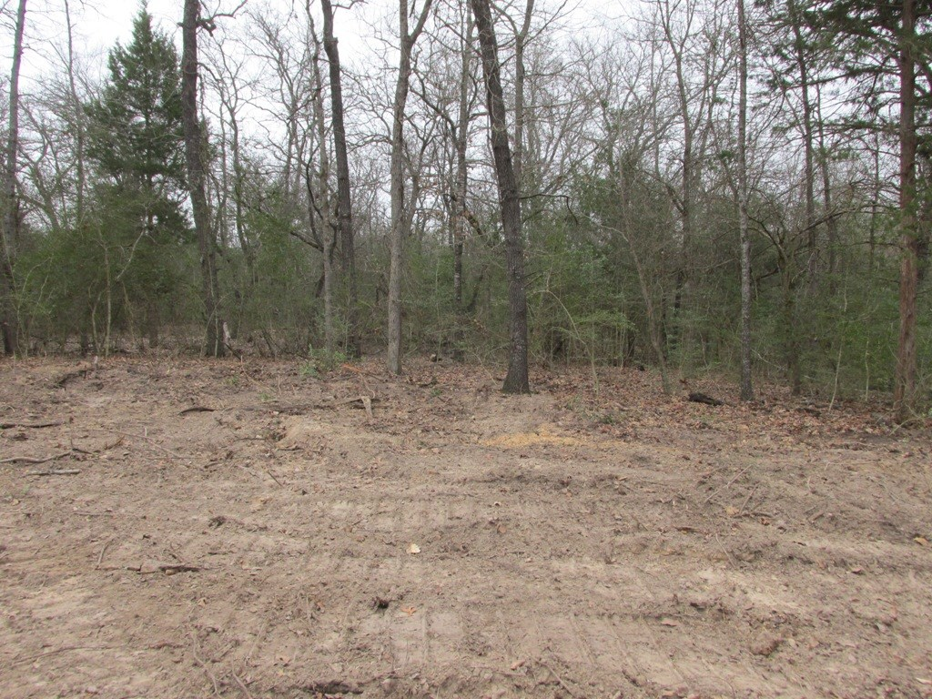 LAND FOR SALE IN MONTALBA, TX