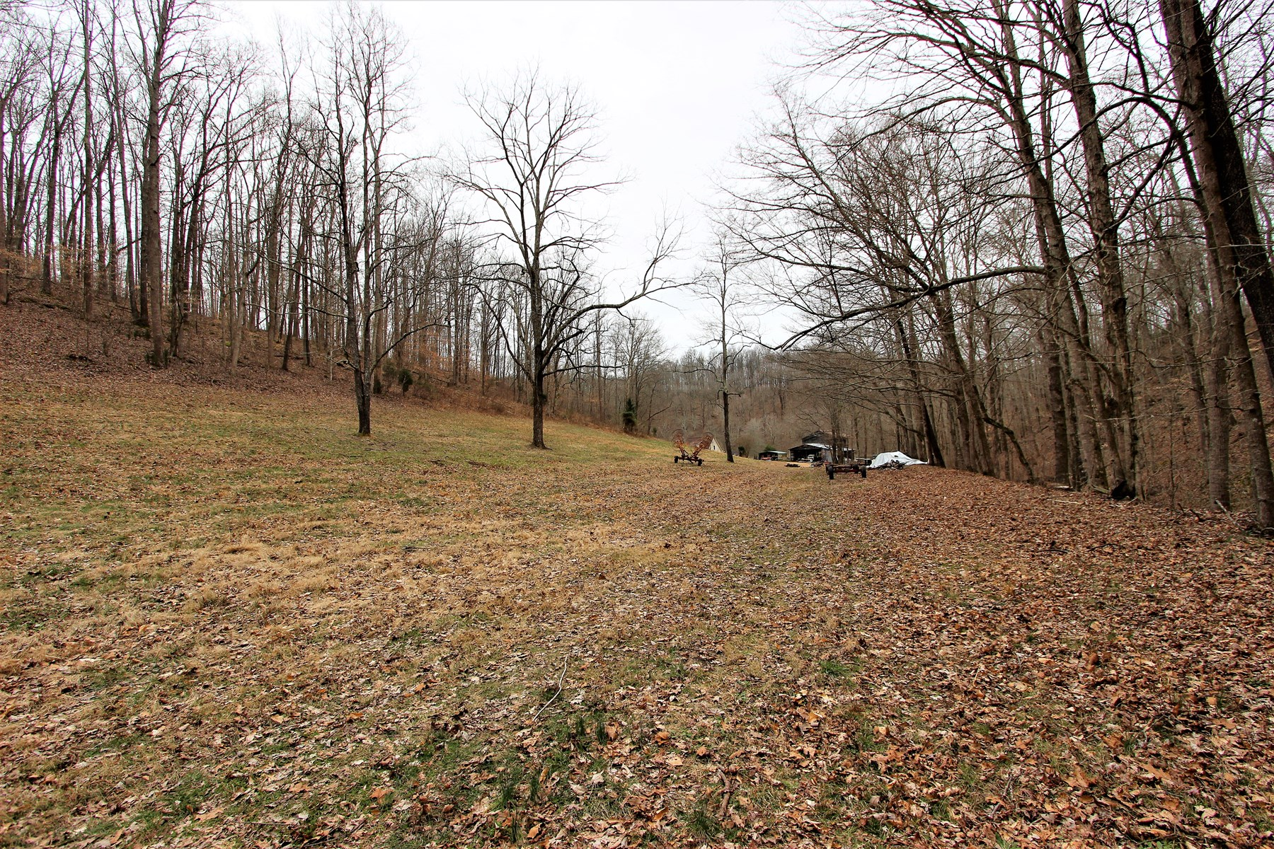Land with Building & Creek for Sale in Santa Fe, Tennessee