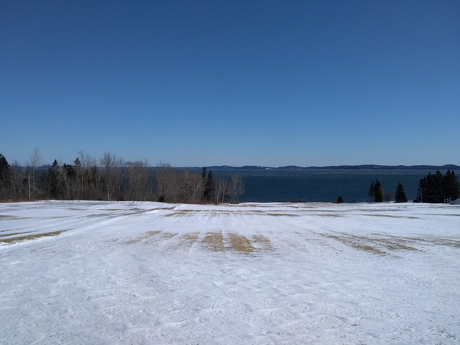 Passamaquoddy Bay Land For Sale | Perry, Maine
