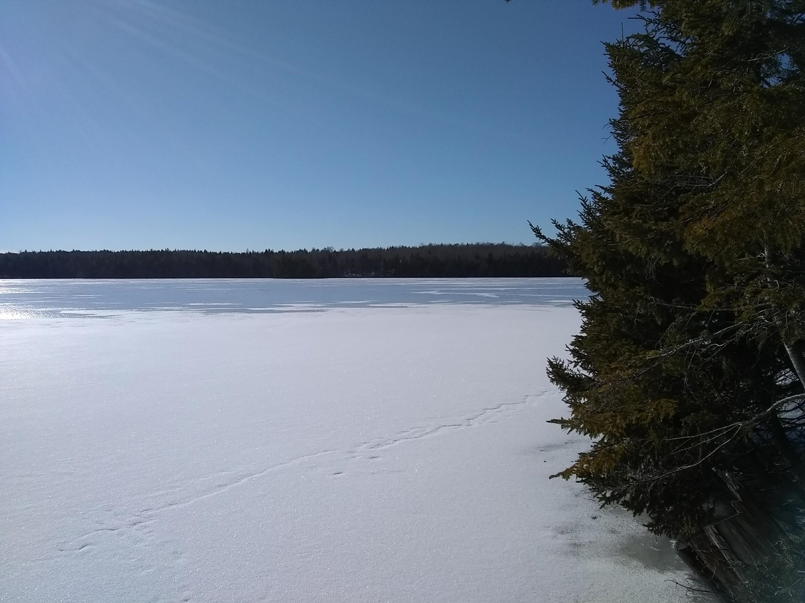 Coastal Lakefront Property for Sale in Washington County ME