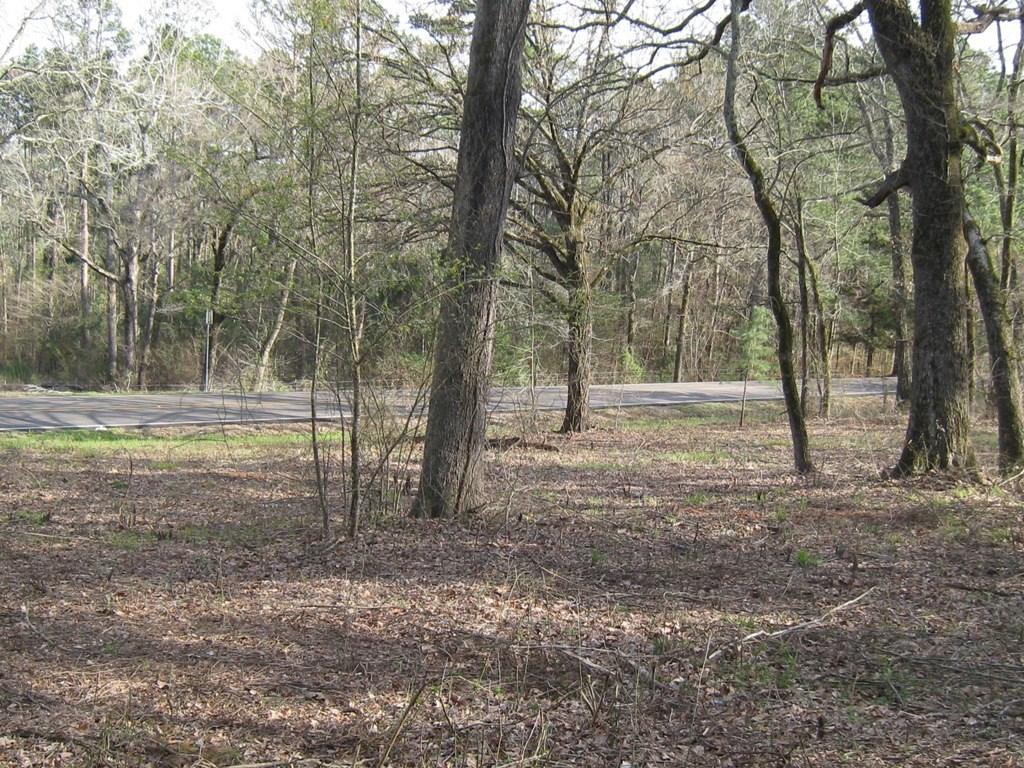 East Tx Land For Sale   Acreage In Frankston Tx