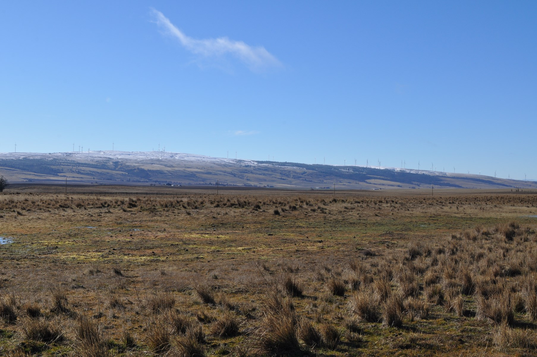 Land for sale in Goldendale Washington, near Columbia river