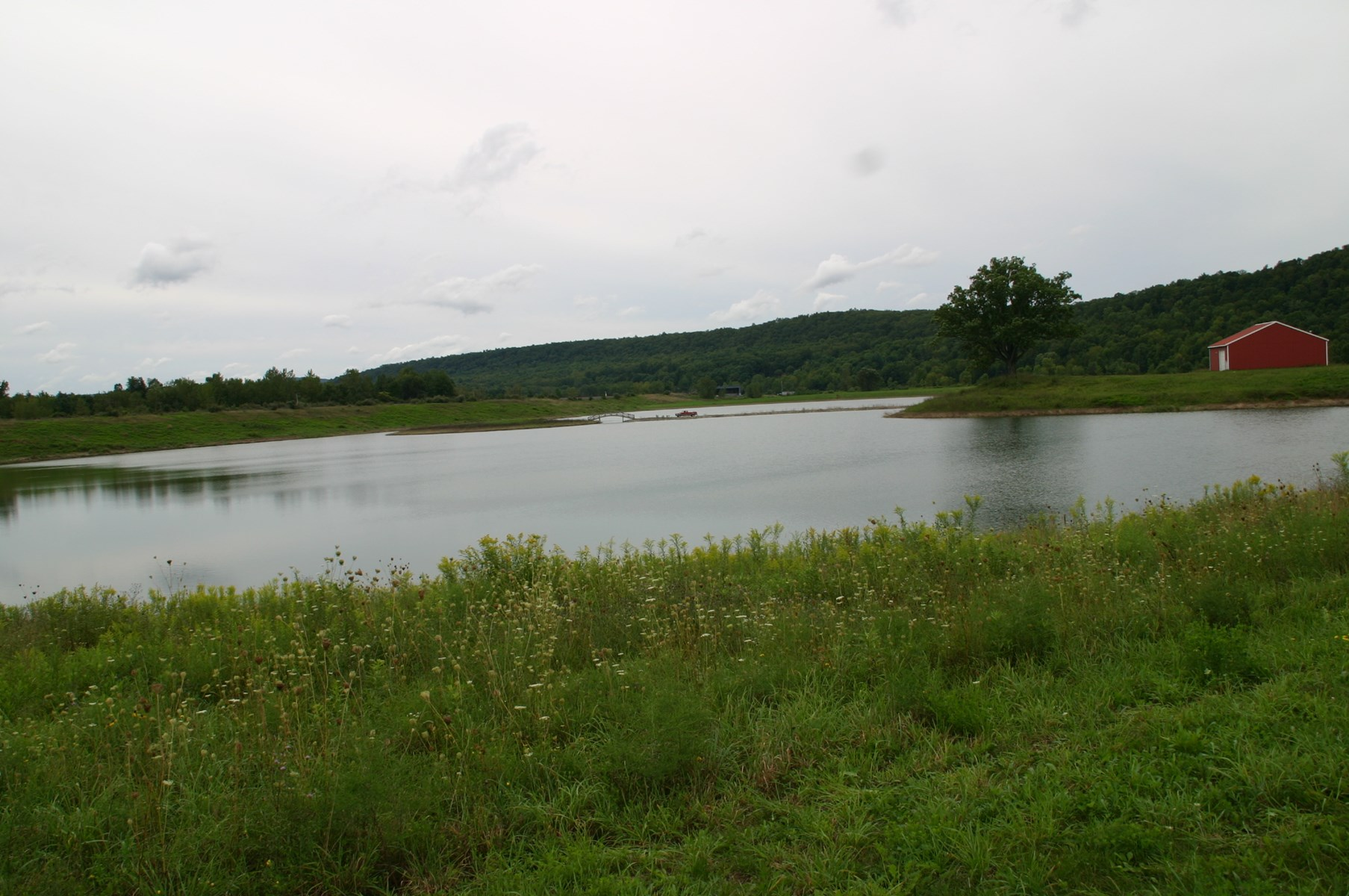 PRIVATE 30 ACRE LAKE ON 73 ACRES FOR SALE IN TIOGA COUNTY NY
