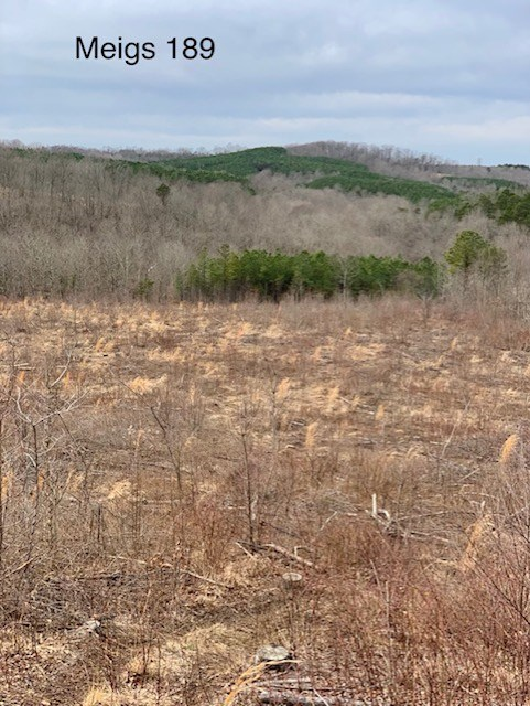 Meigs County 189 Acres