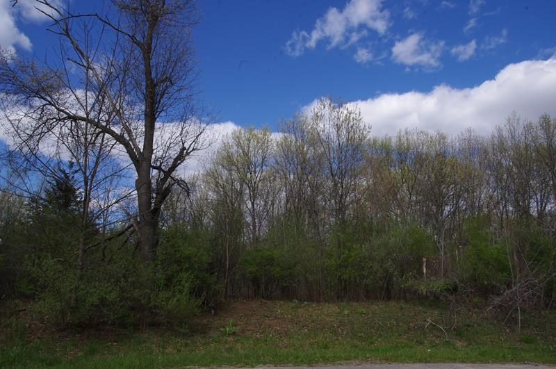Buildable Lot Columbia County Portage