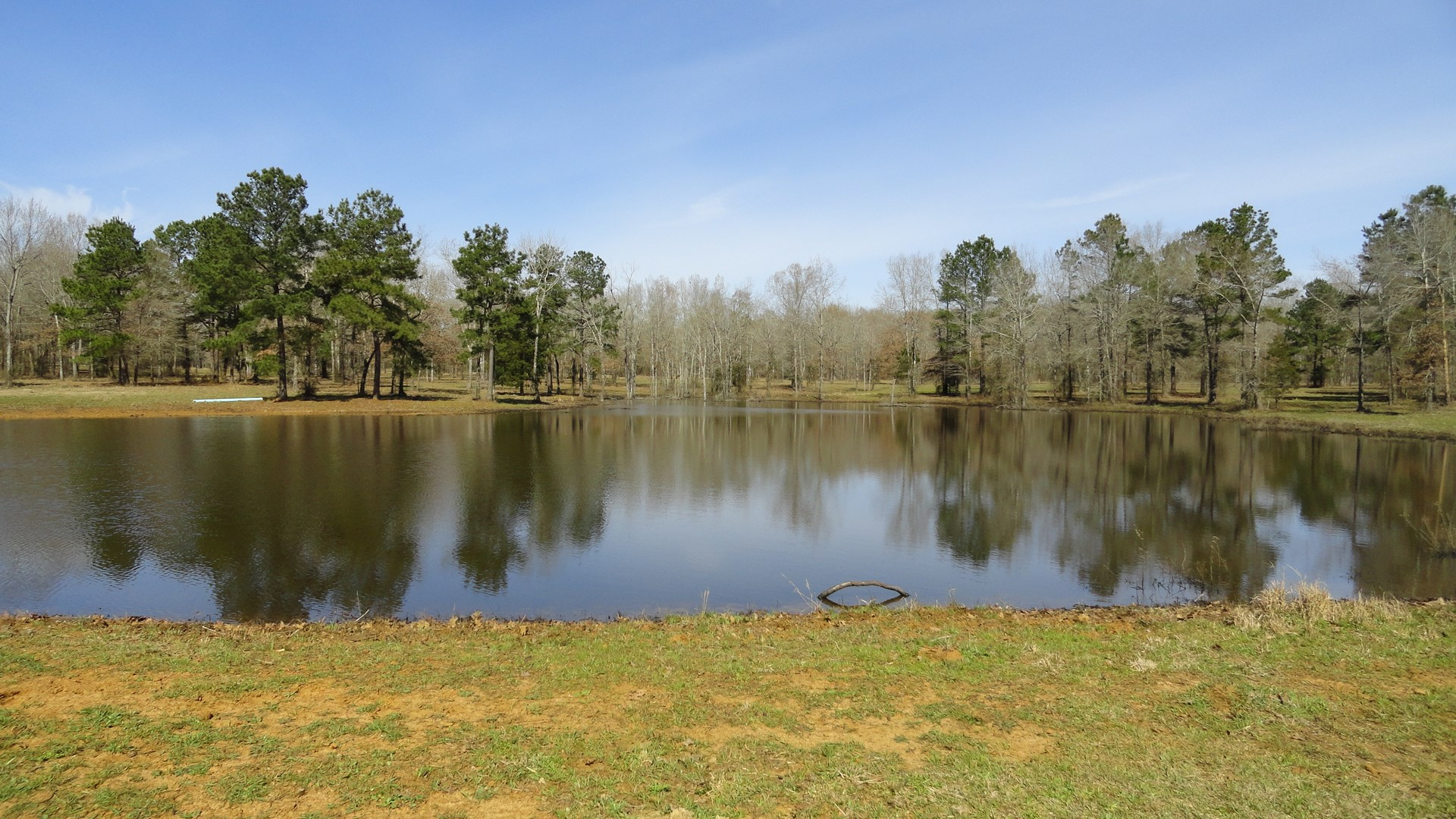 Recreational, Hunting, Rural East Texas Land For Sale