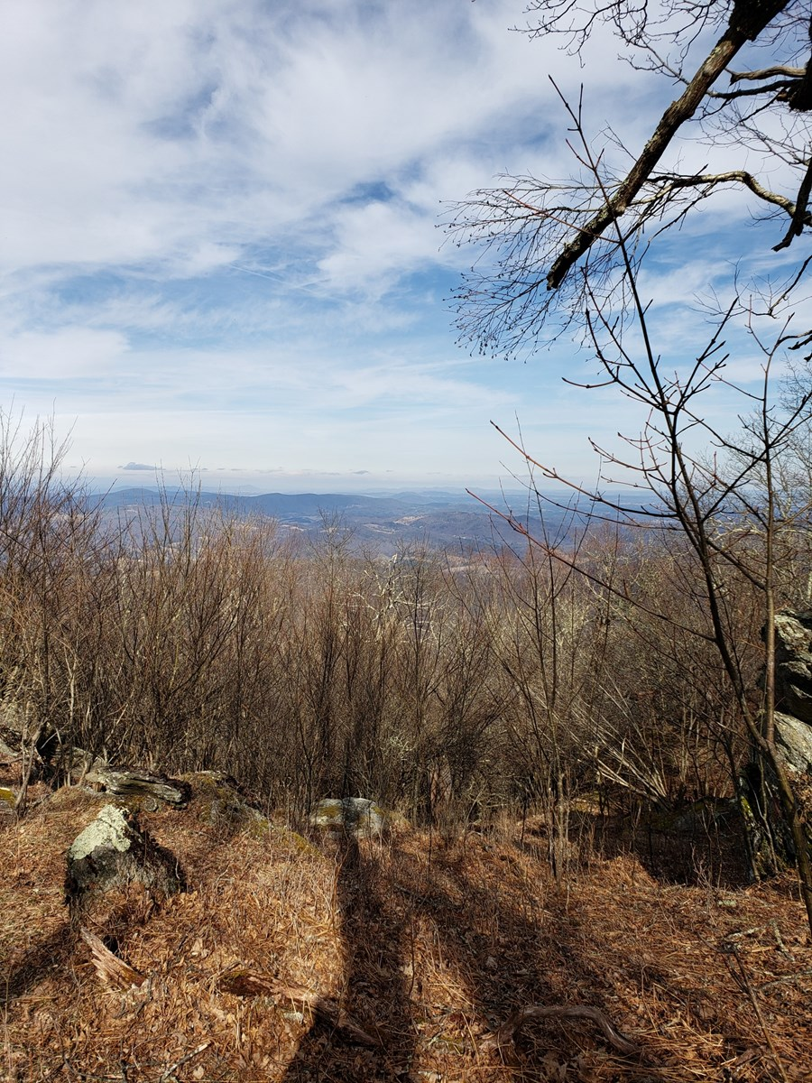 Big View Tract in Blue Ridge Mountains.